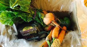 fruits delivery fruits vegetables to your door using a produce delivery program