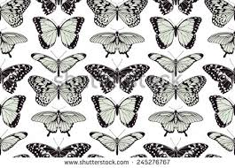 free vector butterfly pattern free vector stock