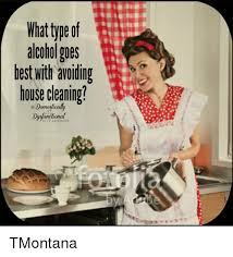 House Cleaning Memes - best house cleaning memes house best of the funny meme