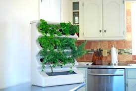 Indoor Gardening Ideas Indoor Vertical Garden Ideas Best Of Minimalist Indoor Garden