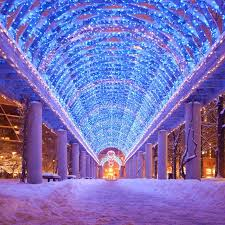 zoo lights stoneham coupons 13 christmas light displays in massachusetts that are pure magic