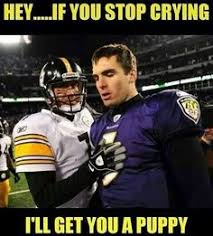 Ravens Steelers Memes - steelers wned rest in peace baltimore ravens teams vs teams