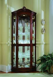 Kitchen Curio Cabinet Corner Curio Cabinets With Glass Doors Cabinet Doors