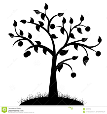 tree silhouette stock photography image 32506602