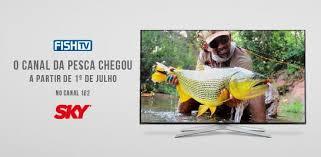 canap en sky fish tv entra na sky no dia 1º de julho fish tv