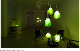 blue green algae lights illuminate and heat the home while