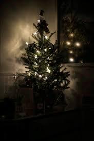 23rd studios boulder led tree lights gif