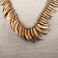 tooth necklace images Newguinea dog tooth necklace arthur w erickson jpg