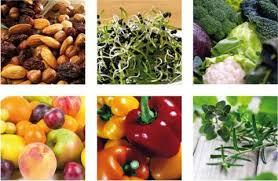 raw food gourmies