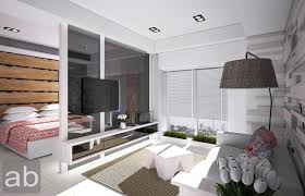 living room division decoration ideas collection contemporary and