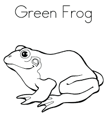 Printable Frog Coloring Pages Frog Free Printable Adult Coloring Frog Colouring Page