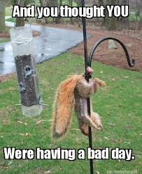Having A Bad Day Meme - meme maker and you thought you were having a bad day