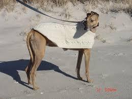 crochet pattern for dog coat 22 best crochet patterns for greyhounds images on pinterest