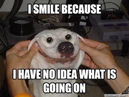 Smiling Dog Meme - image png