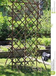 lattice for climbing plants stock photo image 53268877