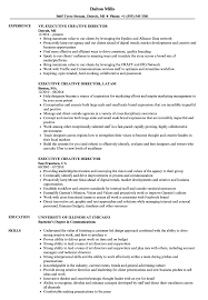 resume exles for executives executive creative director resume sles velvet
