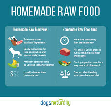 raw dog food homemade vs store bought dogs naturally magazine