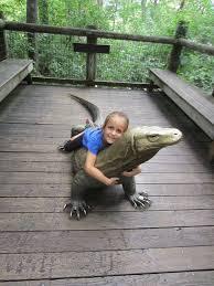 kids go wild for the fort wayne children u0027s zoo the indiana