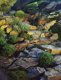 Rock Garden Society by Garden Design Garden Design With Biblical Botanical Gardens