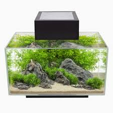Aquascaping Guide 122 Best Spiffy Fish Products Images On Pinterest Aquarium