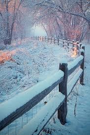 1188 best i winter images on landscapes winter
