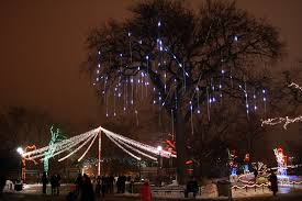 Zoo Light Chicago by 50 Splendid Pictures Of Chicago Lincoln Park And Zoo Places