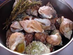 cuisiner des bulots recette de bulots