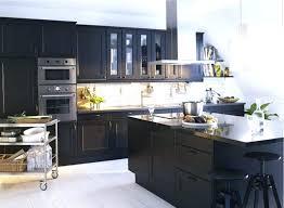 kitchen photo gallery ideas ikea kitchen gallery top kitchen gallery home design ideas kitchen