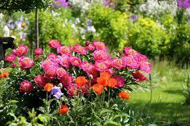 garden design garden design with stunning backyard landscaping