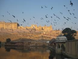 home design rajasthani style rajasthan u0027s 10 best restaurants jaipur jodhpur and beyond