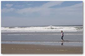 Oregon Tide Tables Oregon Coast Tide Tables