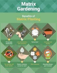 self sustaining garden self sustaining garden beginners guide to matrix gardening
