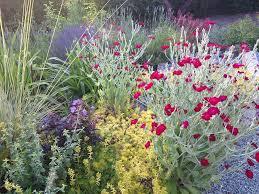 backyardgardener com your backyard gardening source home