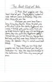 sample expository essay example of a good expository essay expository essays examples of expository essays topicsfree sample of a good expository essay privatewriting example expository