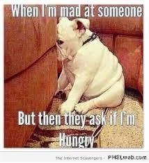 Im Mad Meme - 20 when i m mad at someone dog meme pmslweb
