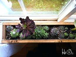 indoor windowsill planter indoor window planter kitchen herb garden in wood box planter home