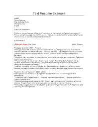 Resume Profile Examples by Profile Resume Examples For Customer Service Best Free Resume