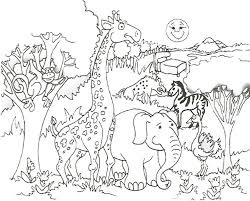 coloring best animal coloring pages ideas on pinterest turtle