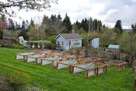 seasonal gardening u2013 california native april 2013 u2013 blueberry hill crafting