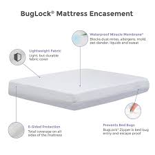 Bed Bugs In Mattress Protect A Bed Buglock Bed Bug Proof Mattress Cover 6 Sided