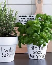 10 idées pour mettre des plantes dans intérieur sharpie