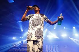 recap the diageo dogg house at tales of the cocktail chilled