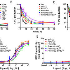 Qu Serum stability of spx mutants in the presence of fbs a qu analogs in fbs