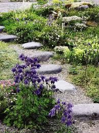 Rock Garden Features The Rock Garden Features Aquilegia Vulgaris Armeria Maritima And