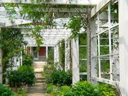 Plants For Pergola by Historic Wilber Mansion Pergola New Prairie Construction