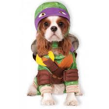 18 best pet halloween costumes ideas homemade