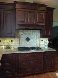 levrette cuisine cuisine hotte de cuisine d angle avec violet couleur hotte de