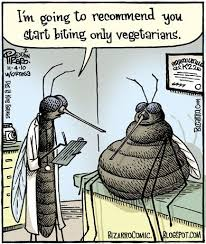 Mosquito Meme - 87 best silly mosquito jokes images on pinterest mosquitoes funny