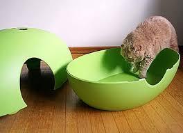 designer katzentoilette varianten katzentoilette poopoopeedo katzenzubehör stylecats