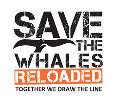 save the save the whales reloaded forms new global community dolphin way